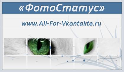 ФотоСтатус: Белый кот с зелёными глазами