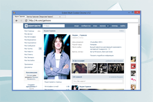 Erdeni Multi Cookie Chrome 1.0 – браузер для ВК с поддержкой мультиаккаунта